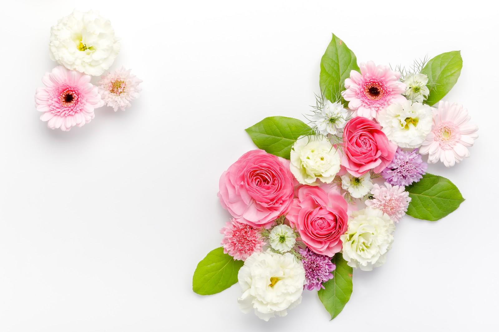 心安らぐ花